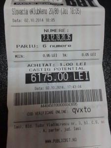 Ce tipuri de loterii aleg tipserii profesionisti